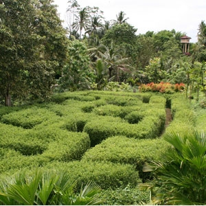 The Botanical Garden, Ubud