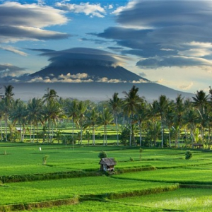 Place to Visit If You Stay Around Sunset Road Bali